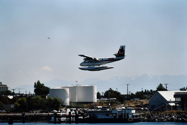 De Havilland Canada Twin Otter — - An Air BC DHC6 descending into Victoria Harbour Water Airport 1988.