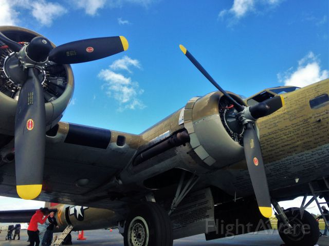 Boeing B-17 Flying Fortress (SAI93012)