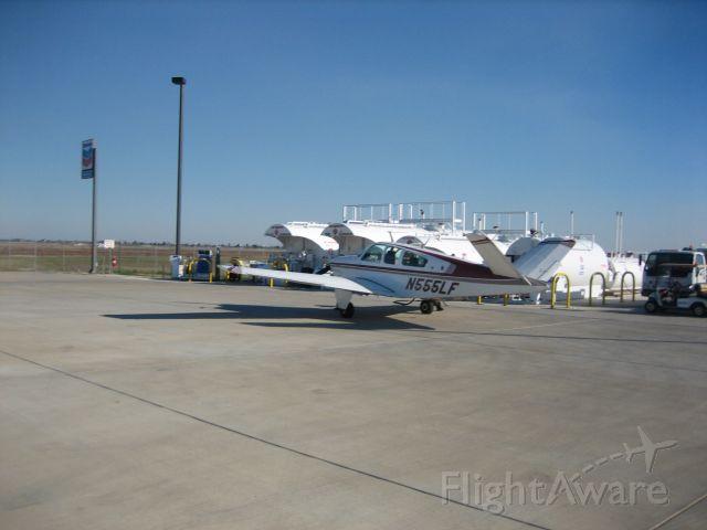 Beechcraft 35 Bonanza (N555LF)
