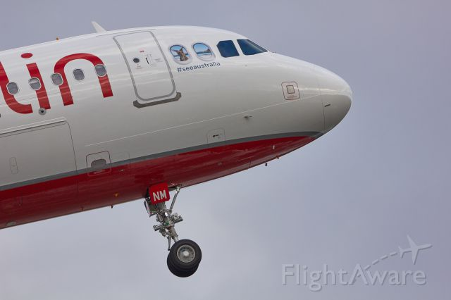 Airbus A320 (D-ABNM) - did i see a lovely kangaroo inside the plane?