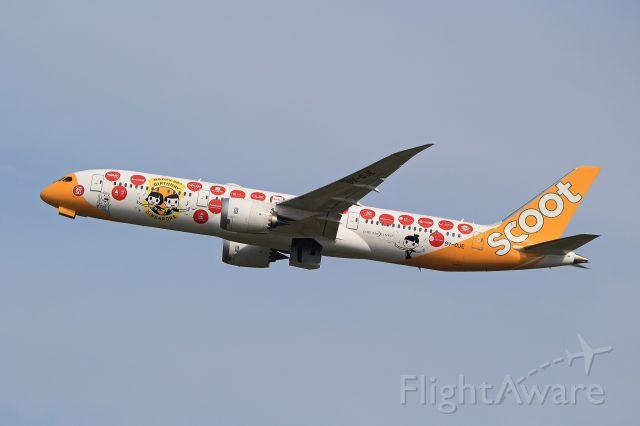 Boeing 787-9 Dreamliner (9V-OJE)