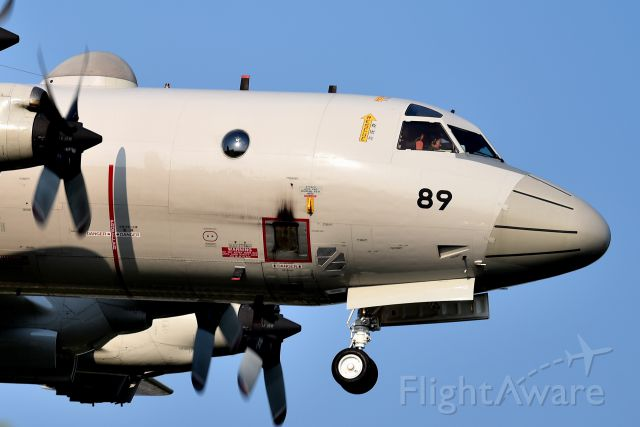 JA5071 — - Japan Maritime Self-Defense<br />Kawasaki P-3C Orion<br />Touch-and-go landing practice.