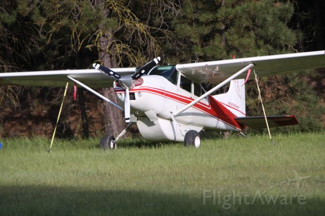 — — - Rimrock Lake 05-29-16  Landed on grass runway and tied down