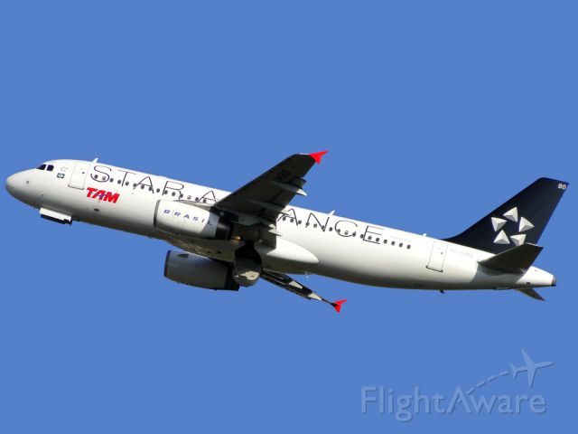 Airbus A320 (PR-MBO) - Special Colours, a Star Alliance member.
