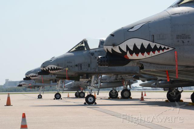Fairchild-Republic Thunderbolt 2 — - Had a few A10 visit Orlando FL.