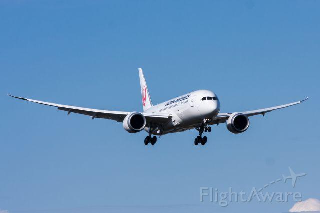 Boeing 787-8 (JA827J) - JAL 787 Landing at Paine Field