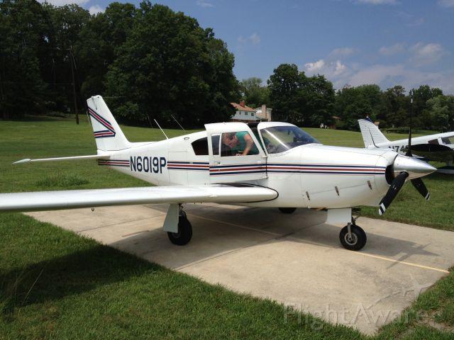 Piper PA-24 Comanche (N6019P)