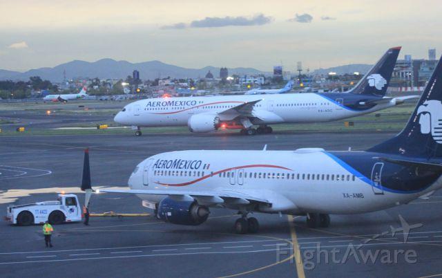 Boeing 787-9 Dreamliner (XA-ADC) - B789 XA-ADC + B738 XA-AMB