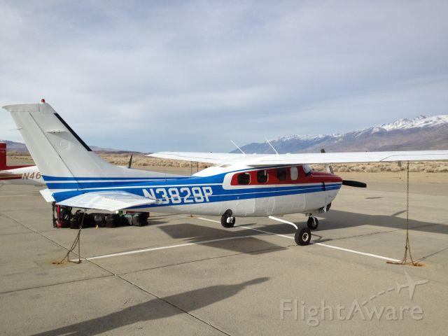 Cessna P210 Pressurized Centurion (N3829P)