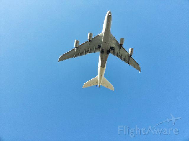 Airbus A380-800 (D-AIMD) - Belly Shot!