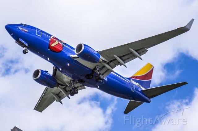 Boeing 737-700 (N409WN)