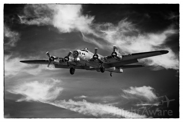 """Boeing B-17 Flying Fortress (23-1909) - June 22, 1943 B17 """"Nine-O-Nine"""" heading out over the Channel on a mission....br /br /Not really, but for a moment, it could have been....br /br /br /Canon 5D MkIII:1/400 s; f4.0; ISO100; 70-200mm f2.8L @110.0 mm June 22, 2013 B17 """"Nine-O-Nine"""" about 100 ft.  47.514N 122.289W Boeing Field."""