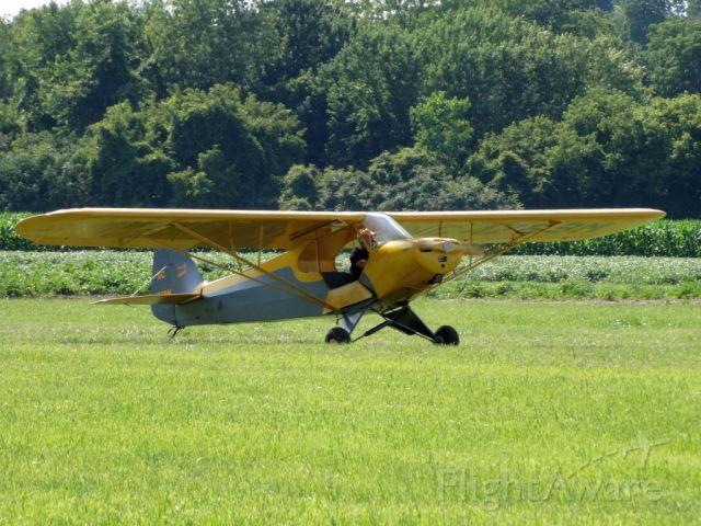 Piper L-18B Cub Special (N4769M)