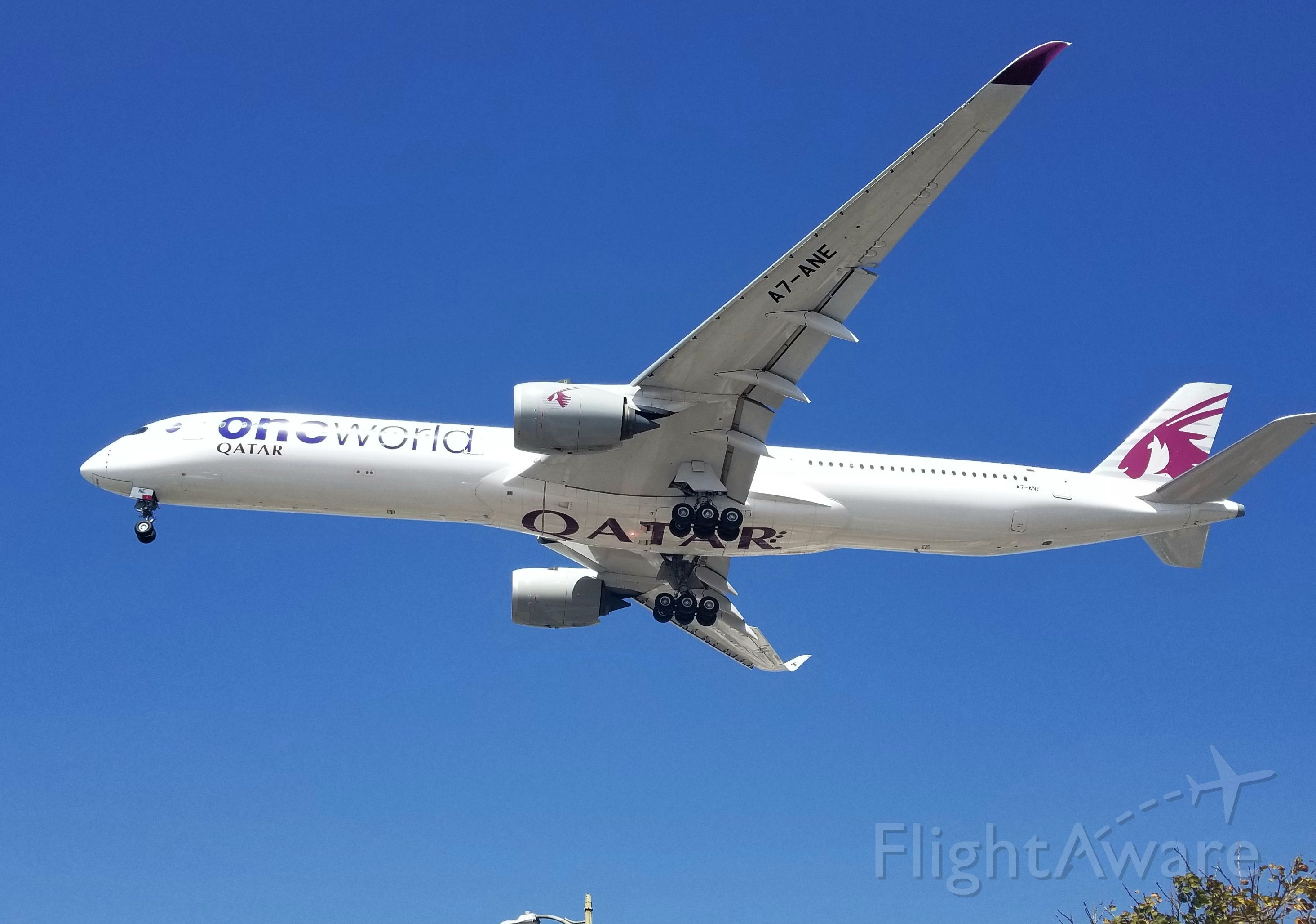 """Airbus A350-1000 (A7-ANE) - QATAR A350-1000 in the """"oneworld"""" livery landing LAX 24R."""