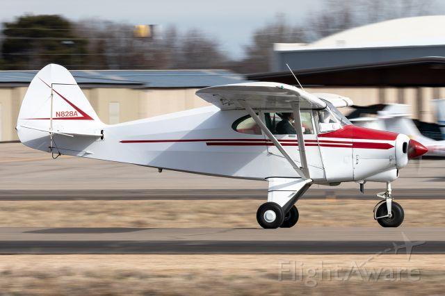 Piper PA-22 Tri-Pacer (N828A)