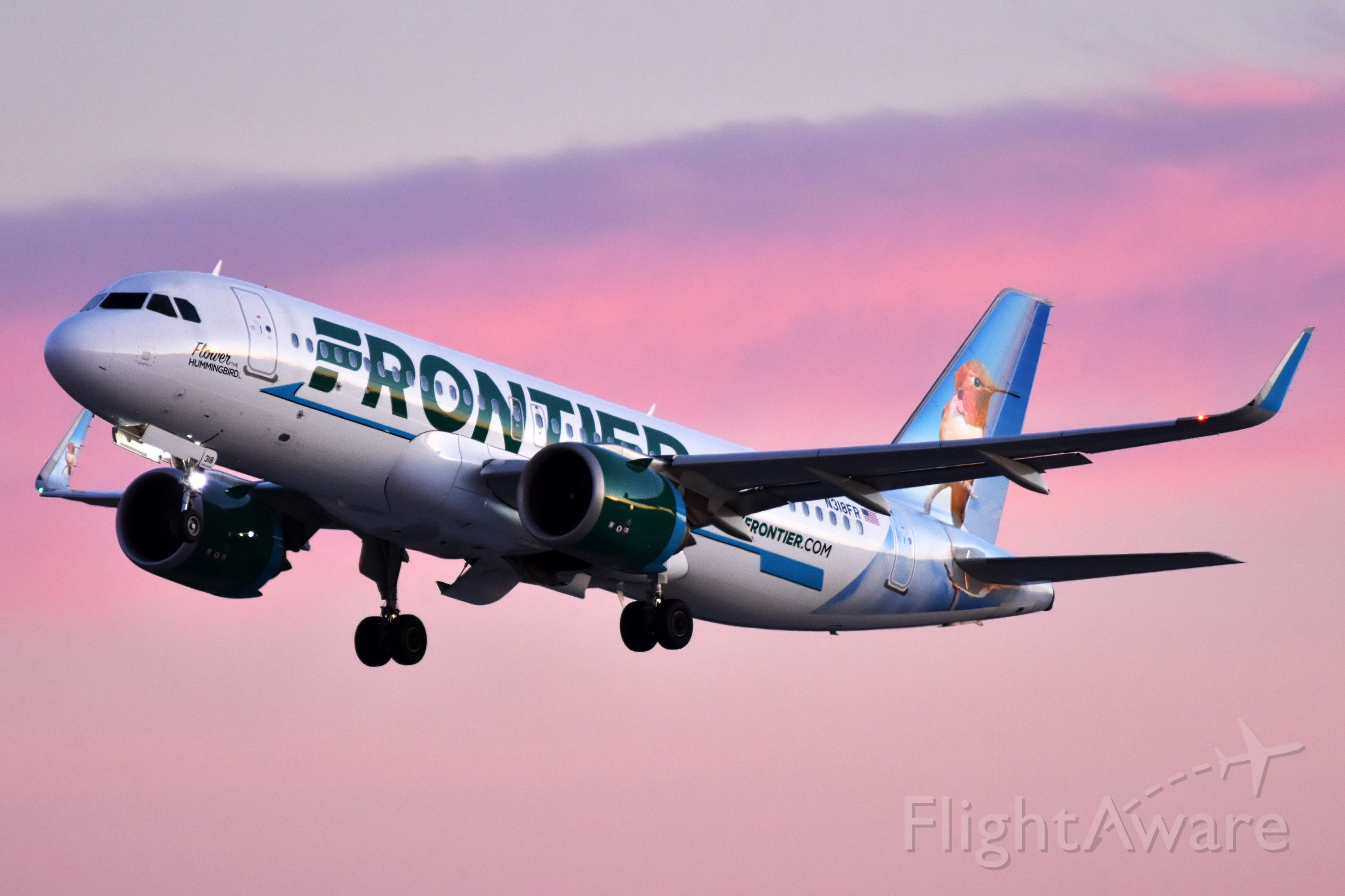 Airbus A320neo (N318FR) - Frontier (Flower the Hummingbird Livery) departing YYC into an awesome pink sky at sunset on Jan 13.