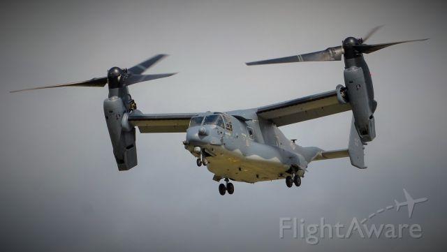 Bell V-22 Osprey (0058) - Osprey