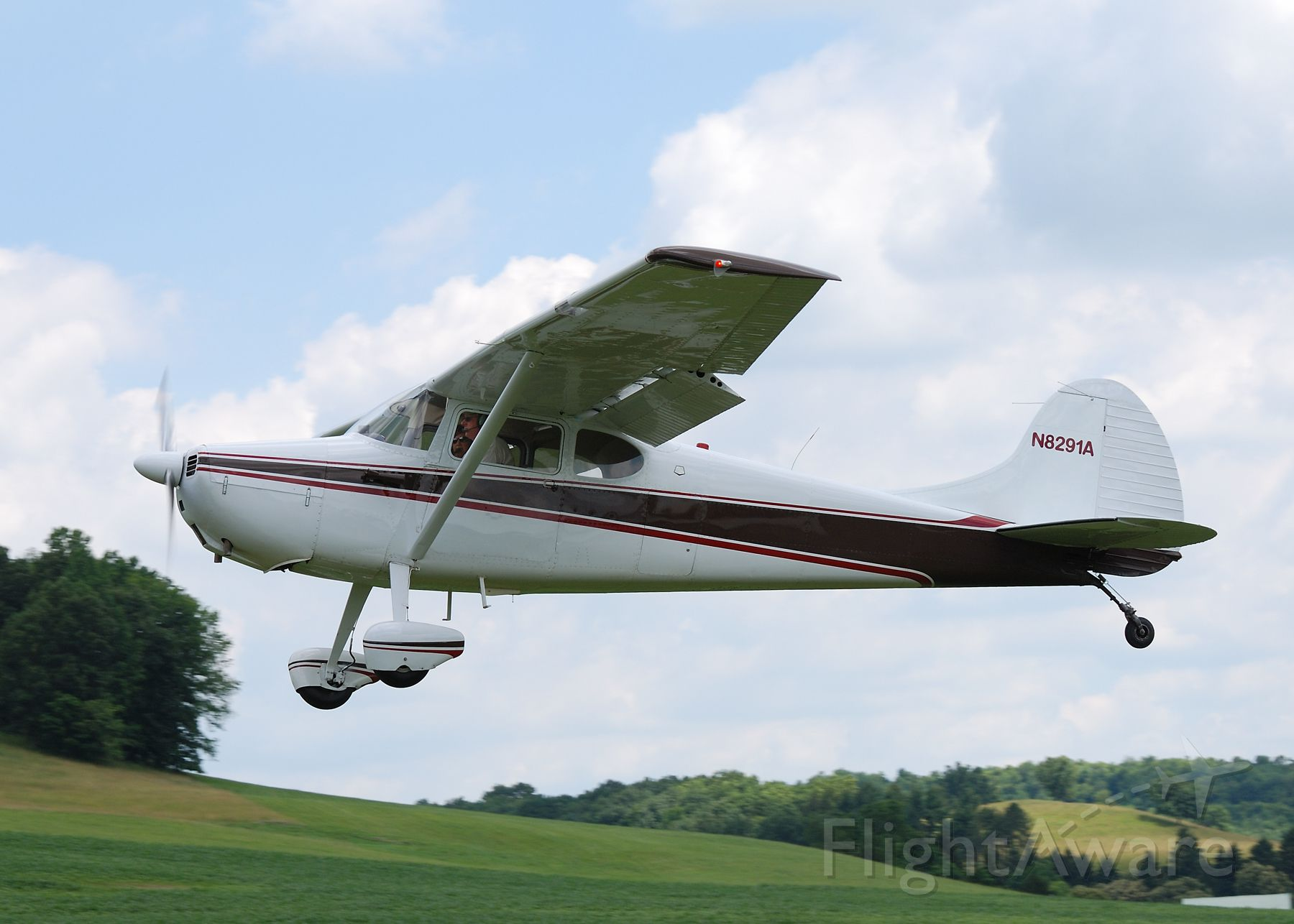 Cessna 170 (N8291A)