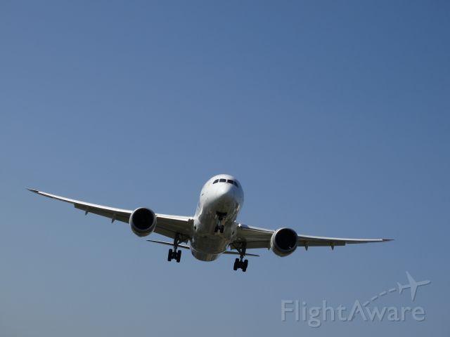 Boeing Dreamliner (Srs.8) (JA802A) - Landing at Taipei.