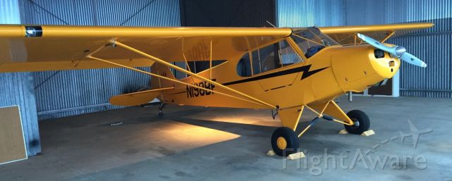 Piper NE Cub (N198BF)