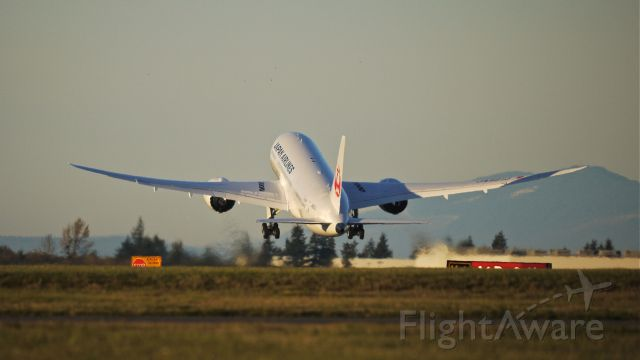 Boeing 787-8 (JA821J) - JAL8101 climbs from Rwy 34L beginning its delivery flight to RJAA / NRT on 11/21/13. (LN:20 cn 34831).