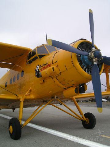 Antonov An-2 — - AN-2 at Watsonville airshow on Memorial weekend 5-24-09.