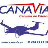 canavia canavia