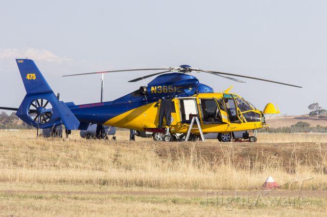 VOUGHT SA-366 Panther 800 (N365JL) - McDermott Aviation Heli-Lift Australia (N365JL) Aerospatiale AS-365N-2 Dauphin 2 at Wagga Wagga Airport.