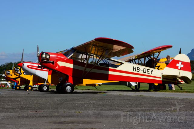 HB-OEY — - 1944 built former 44-80144 (USAF) leading the row at Piper Cub FlyIn 2014. Registered since March 12, 1946