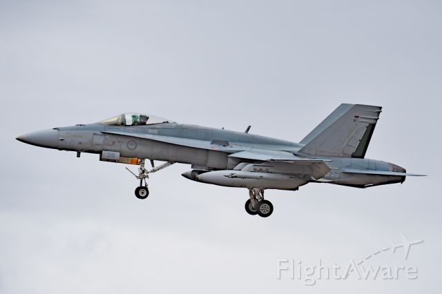 Boeing Hornet (A2126) - McDonnell FA-18A RAAF serial A21-26, 75 sqn. YPEA 21 February 2020.