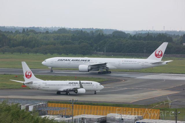 Boeing 737-800 (JA320J)