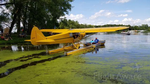 Piper L-21 Super Cub (N276T)