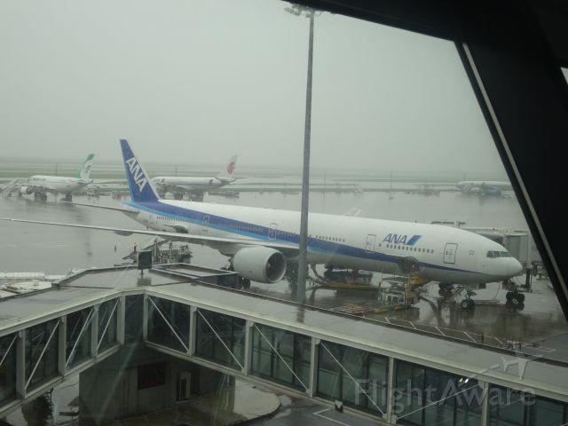 BOEING 777-300ER (JA782A) - 2014.08.17 ANA922 ZSPD-RJAA