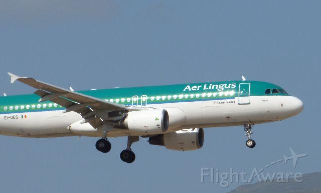 Airbus A320 (EI-DES) - Detalles EI-DES Aer Lingus Airbus A320-214 LPA/GCLP Spotting