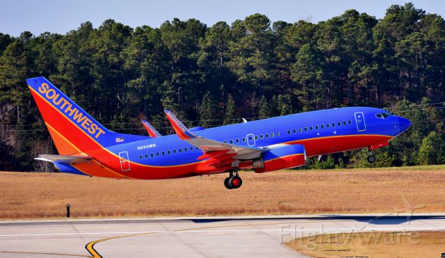 Boeing 737-700 (N253WN) - At the RDU observation deck, 12/3/17.  New radome on old livery - poor thing looks like she