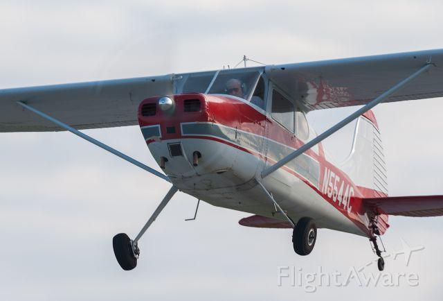 Cessna 170 (N5544C)