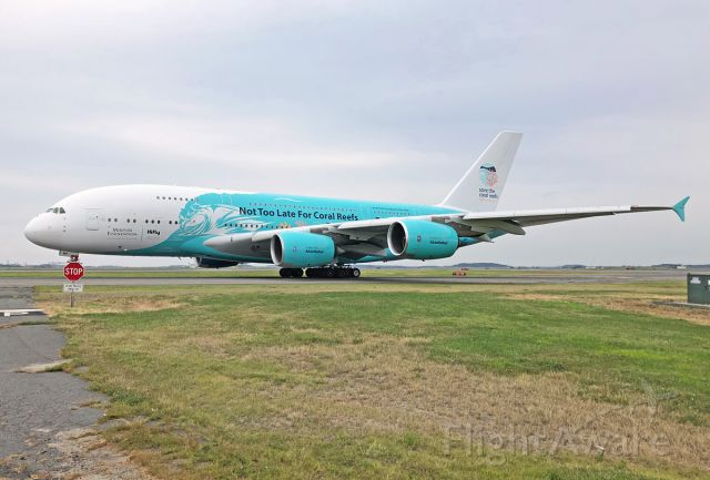 Airbus A380-800 (9H-MIP) - Please  Save the Coral  Reefs