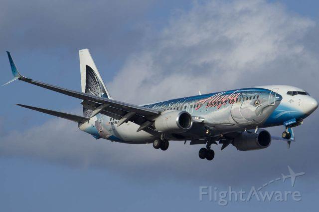 Boeing 737-800 (N559AS)