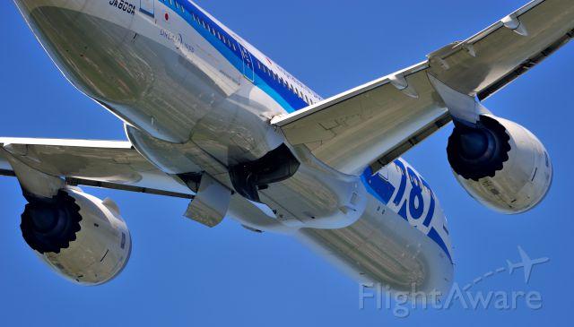 Boeing 787-8 (JA809A)