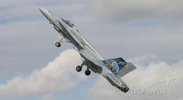 McDonnell Douglas FA-18 Hornet (18-8703) - RMH