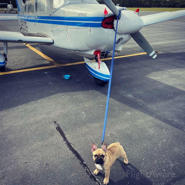 Piper Cherokee (N5932F) - 1 puppy power