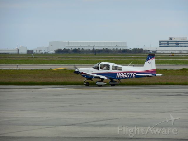 Beechcraft Bonanza (36) (N960TE)