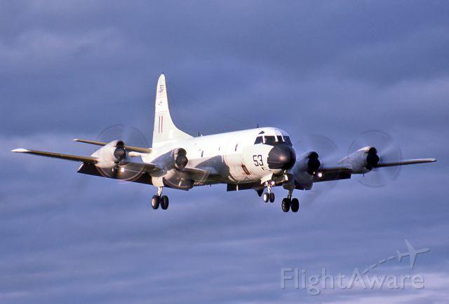 A9753 — - AUSTRALIA - AIR FORCE -LOCKHEED AP-3C ORION - REG A9-753 (CN 285D-5660) - EDINBURGH RAAF BASE ADELAIDE SA. AUSTRALIA - YPED (4/10/1984)35MM SLIDE SCANNED AT 6400 DPI.