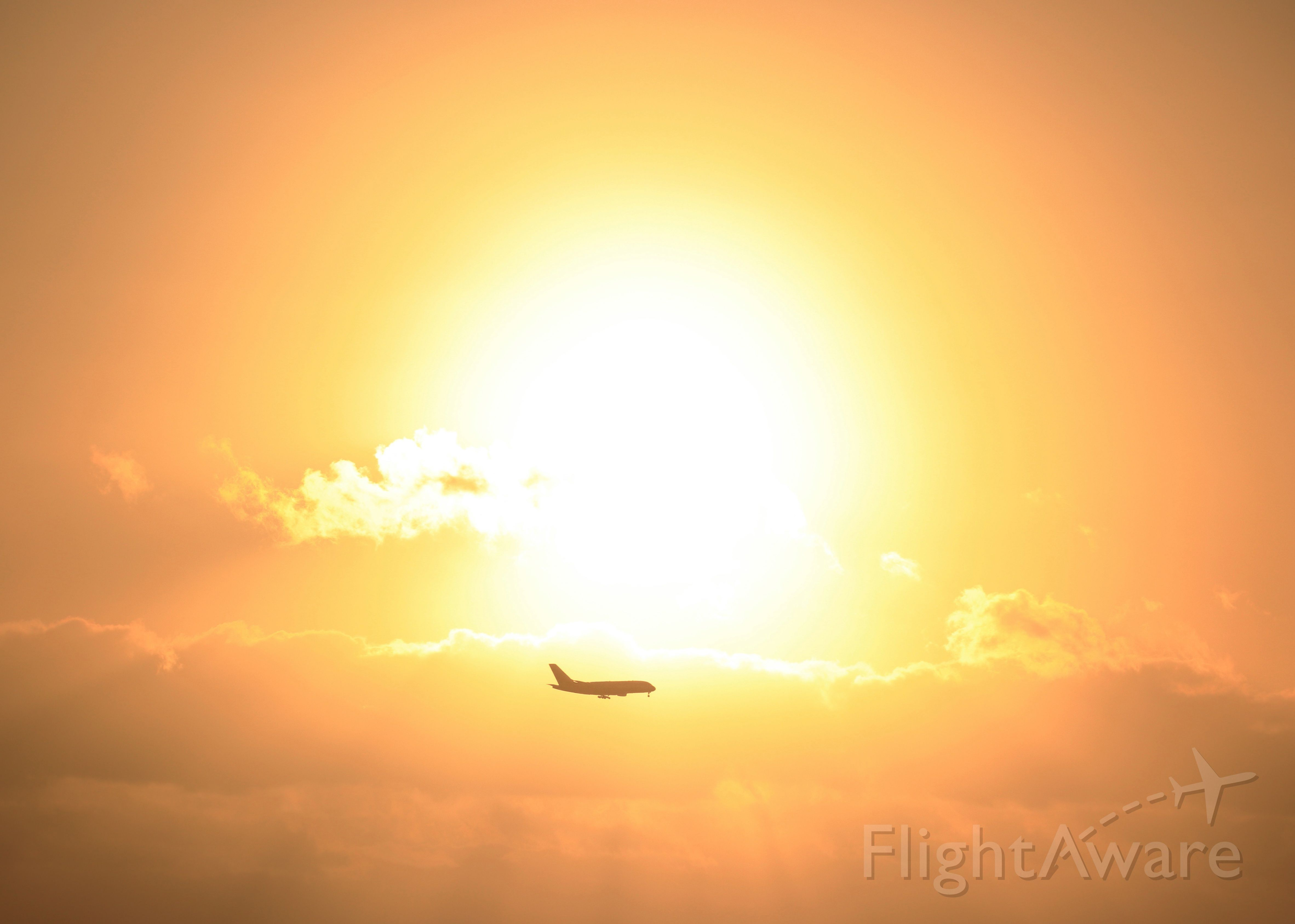 Airbus A380-800 — - Big sun, big sky and apparently small A380 on an early morning approach to Brisbane airport