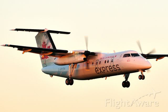 de Havilland Dash 8-100 (C-FPON) - Arriving from YQB/CYQB when the sun was already very low in the western sky.