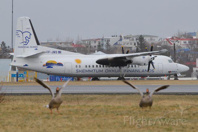 Fokker Maritime Enforcer (TF-JMS)