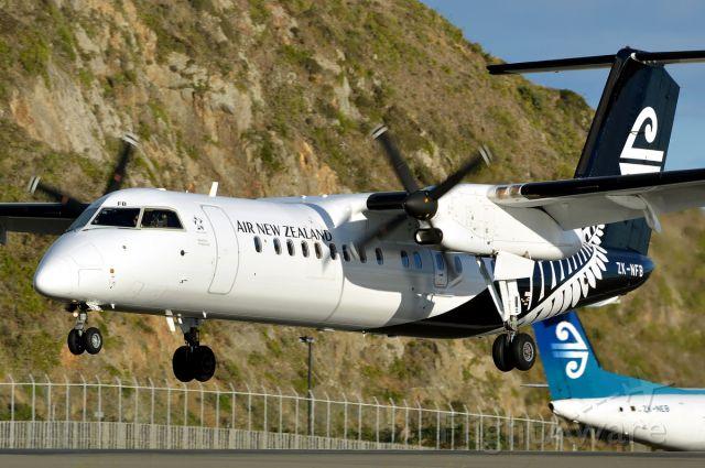 de Havilland Dash 8-300 (ZK-NFB)