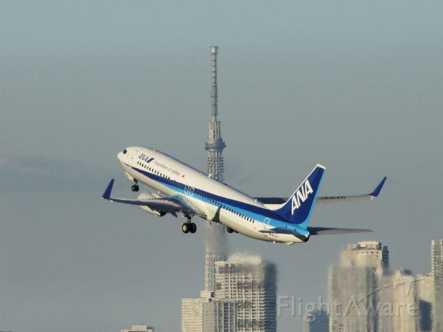 Boeing 737-700 (JA81AN)
