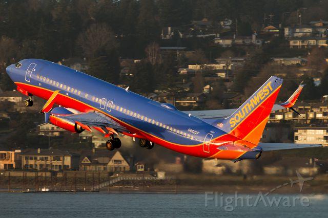 Boeing 737-800 (N8602F)