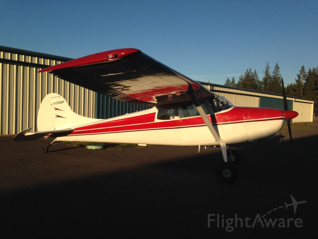 Cessna 170 (N170DP) - Fresh wash and wax after annual